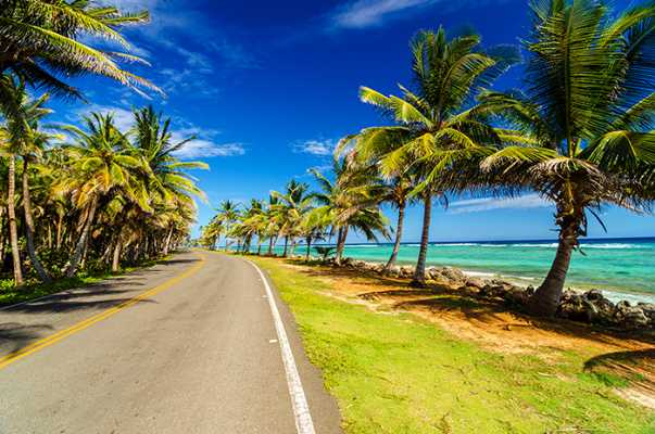 20141111160351391600_shutterstock_125122250_palm trees in San Andres, Colombia