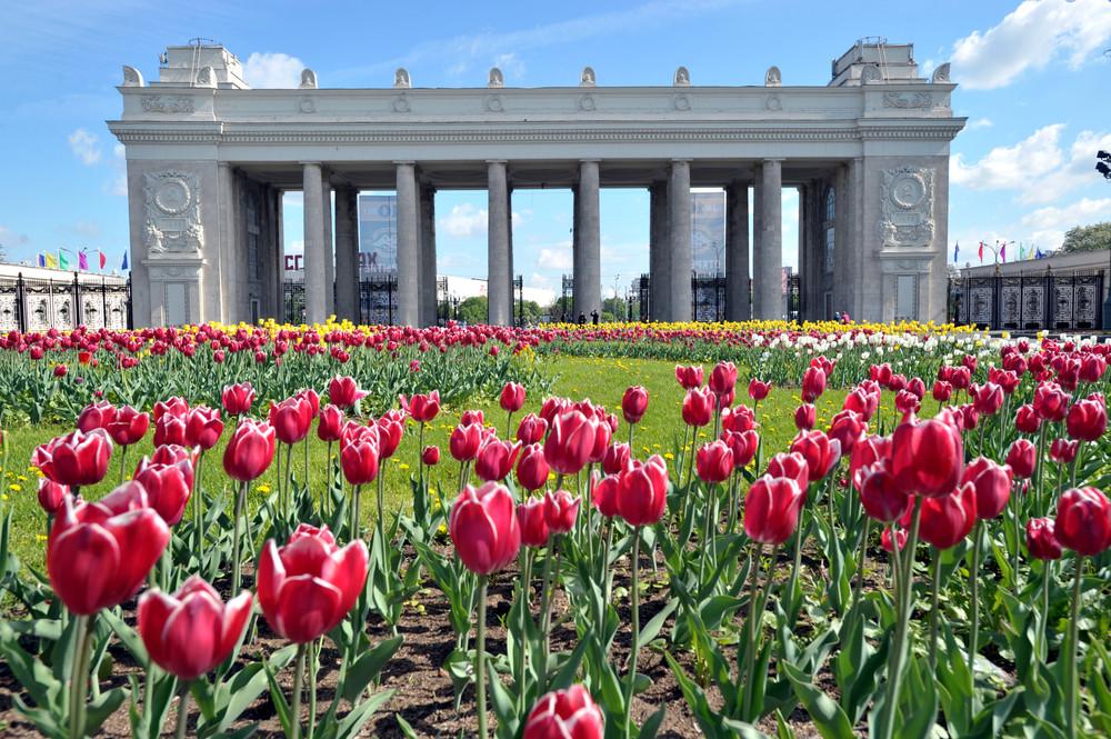 gorky-park.-Photo-gazeta.ru_